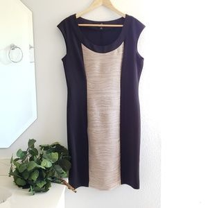 Ronni Nicole black & beige rippled dress